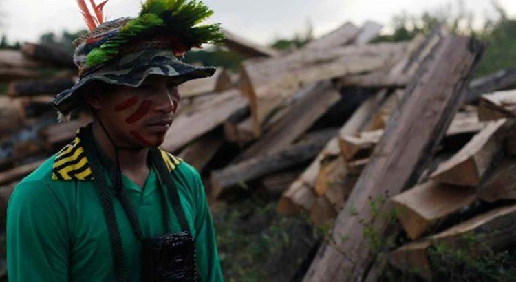 Indígena Kaapor passa por estacas de madeira retiradas próximo ao território indígena Alto Turiaçu. Foto: Lunae Parracho.