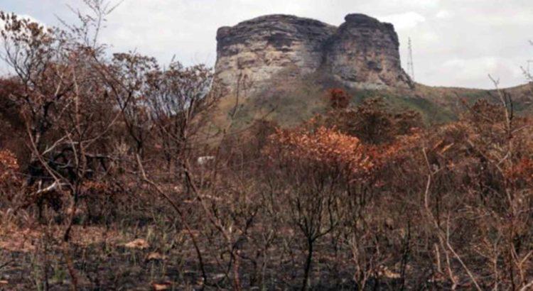 Área queimada próxima ao Morro do Pai Inácio. Foto de Rafael Duarte, CI Brasil.